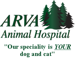 Arva Animal Hospital Logo